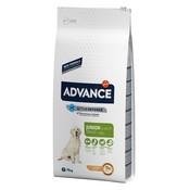 Advance Advance maxi junior