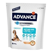 Advance Advance puppy protect initial
