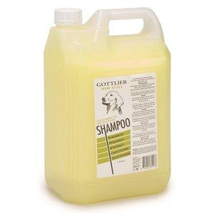 Gottlieb Gottlieb shampoo ei