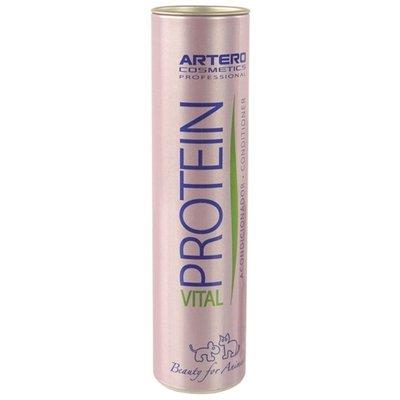 Artero Artero protein vital leave in conditioner