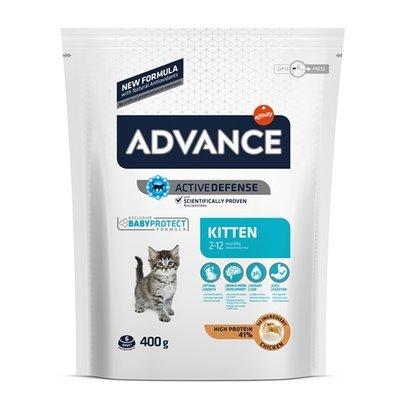 Advance Advance kitten