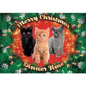 Plenty gifts Plenty gifts placemat xmas kittens mix