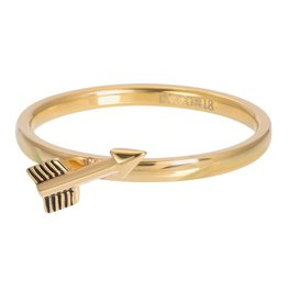 IXXXI IXXXI Ring Symbol Arrow Goud