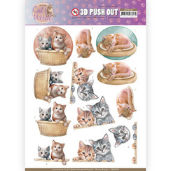 SB10380 - 3D Uitdrukvel - Amy Design - Cats World - Kittens