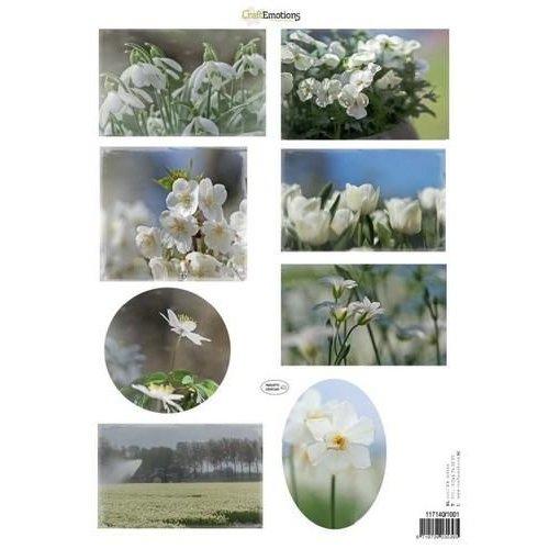 CraftEmotions 117140/1001 - CraftEmotions Knipvellen voorjaarsbloemen 1 wit A4 160 grm