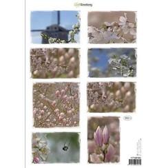 117140/1002 - CraftEmotions Knipvellen voorjaarsbloemen 2 roze A4 160 grm