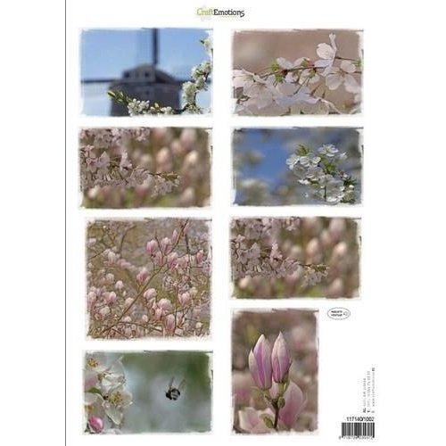 CraftEmotions 117140/1002 - CraftEmotions Knipvellen voorjaarsbloemen 2 roze A4 160 grm
