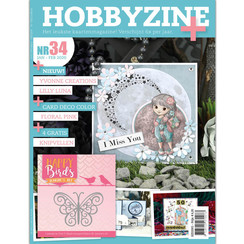 HZ02001 - Hobbyzine Plus 34