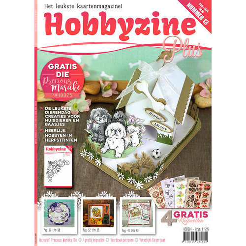 Hobbyzine Plus HZ01604 - Hobbyzine Plus 13