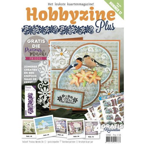 Hobbyzine Plus HZ01603 - Hobbyzine Plus 12