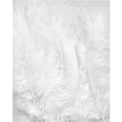 12228-2802 - Marabou Feathers,White,15pcs