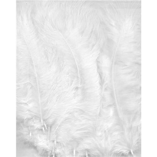 12228-2802 - Marabou Feathers,White,15pcs