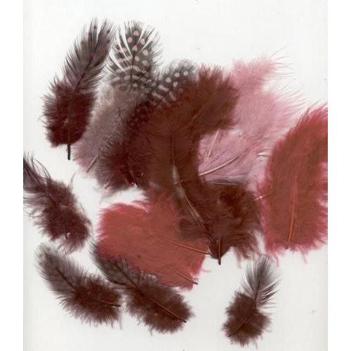 12229-2909 - Feathers,Marabou & Guinea Fowl,Ass.Mix,Wine