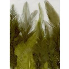 12235-3506 - Feathers, Forest, 3x5 pcs, 15pcs