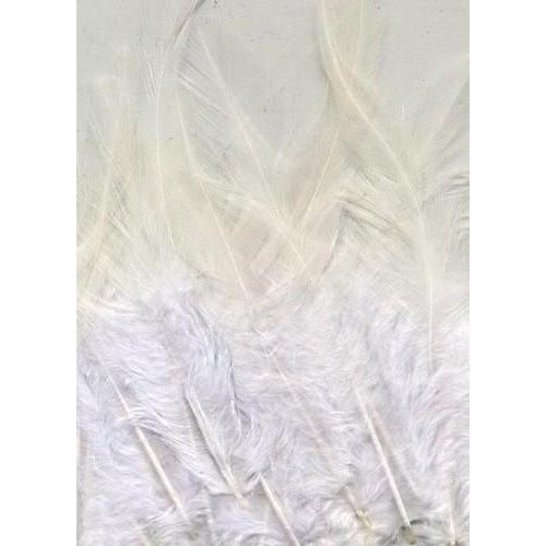 12235-3509 - Feathers, Pure White, 15pcs