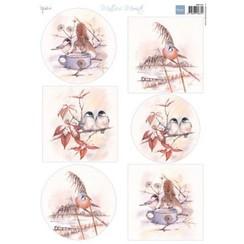 MB0181 - Knipvel A4 Mattie's Mooiste Winter birds