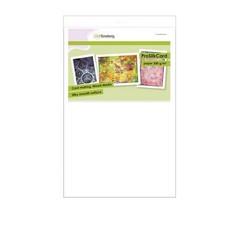 01-0201-0071 - CraftEmotions ProSilkCard - luxe glad karton wit 10 vl 32 x 46cm - 300 gr