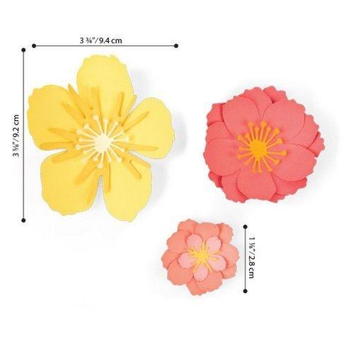 Sizzix 664443 - Sizzix Thinlits Die Set - 7PK Floral Blossom 3 Jen Long