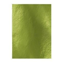 9446E - Tonic Studios spiegelkarton - glans - holly green 5 vl A4