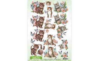 Amy Design Sweet Pet Collectie