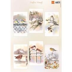MB0196 - Matties mooiste slimline vogels