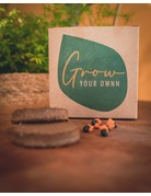 Grow your ownn: Golden barrel cactus