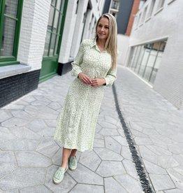 Heart Mind Darcey Dress  Leopard Mint
