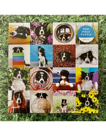 Galison 500 Piece Puzzle Momo The Dog