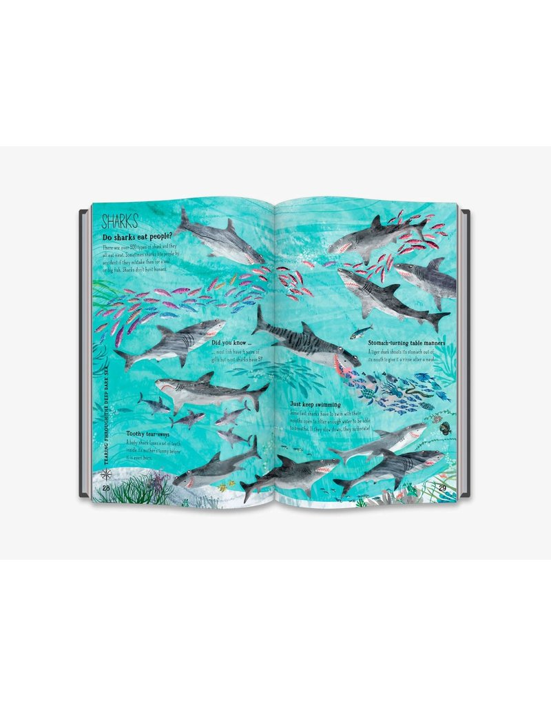 Thames&Hudson The Big Book of the Blue