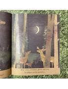 Bookspeed Moon: Night-Time Around The World