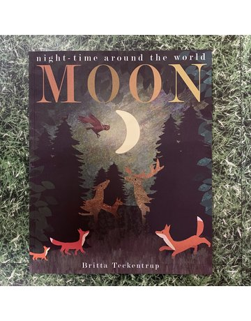 Bookspeed Moon: Night-Time Around The World