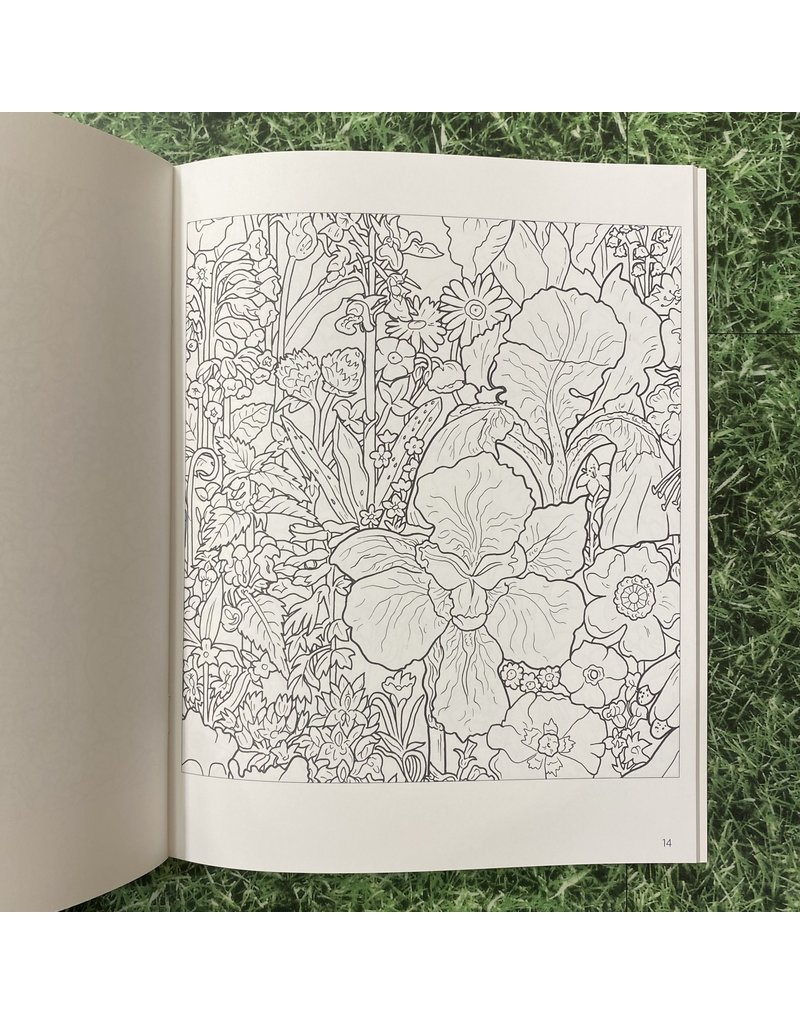 Pomegranate Colouring Book Rosalind Wise