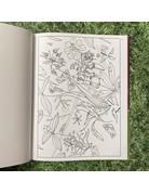Pomegranate Hardback Colouring Book Charley Harper