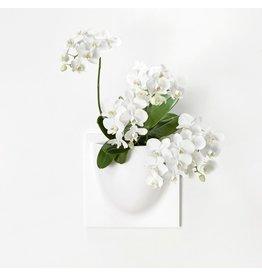 VERTIPLANTS VERTIPLANTS WHITE 30x30