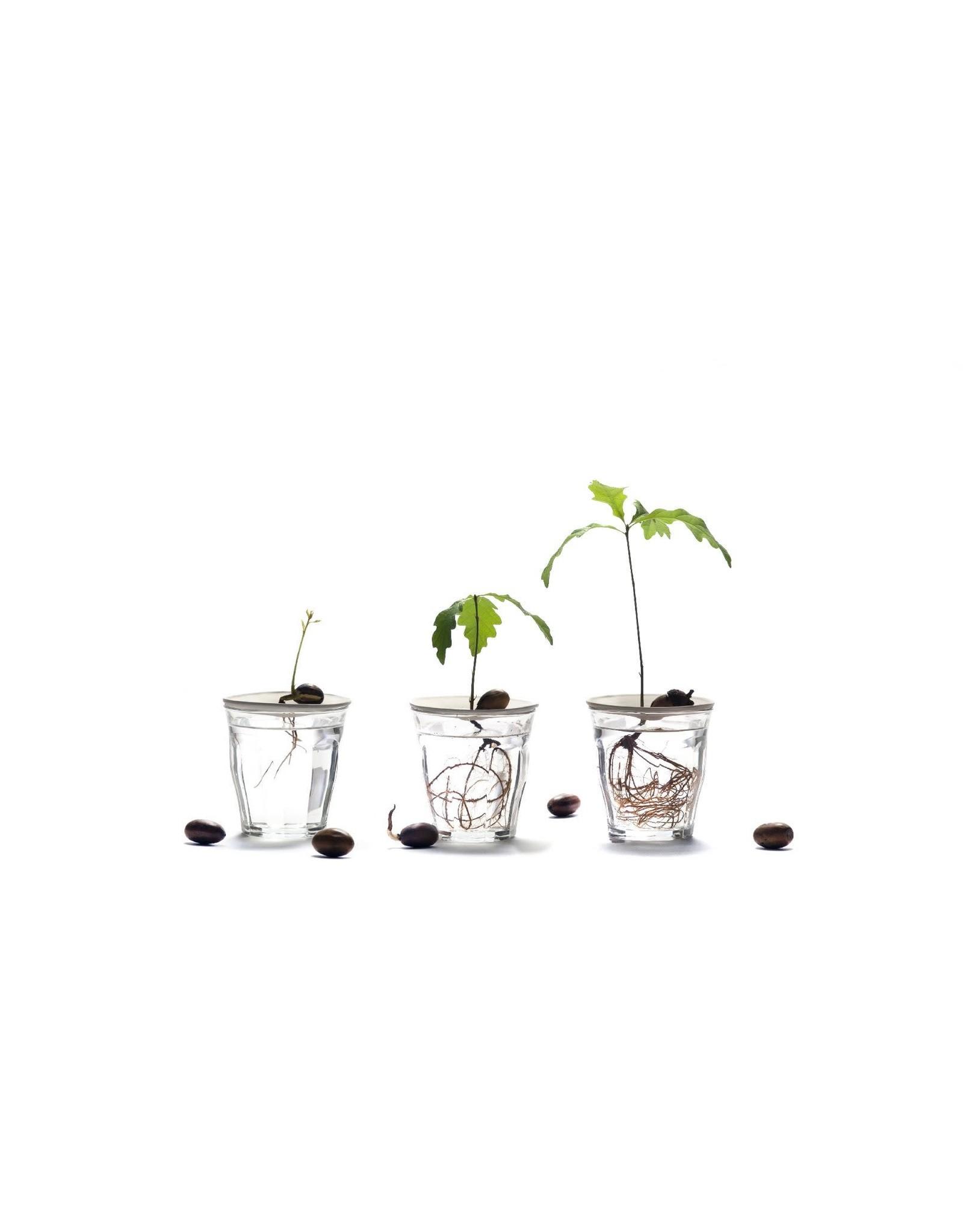 Botanopia Deluxe Germination & Propagation Gift Set