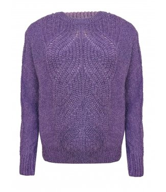 Les Favorites 8552102  Babs darkish Purple knit trui