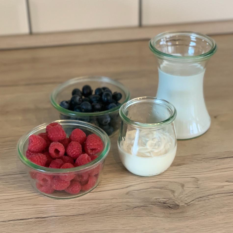 wowgurt drink smoothie vegan