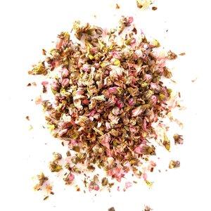 Tash Tea Cherry Blossom - UITVERKOCHT