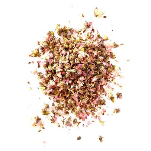 Tash Tea Cherry Blossom