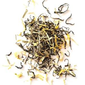 Tash Tea Fristea