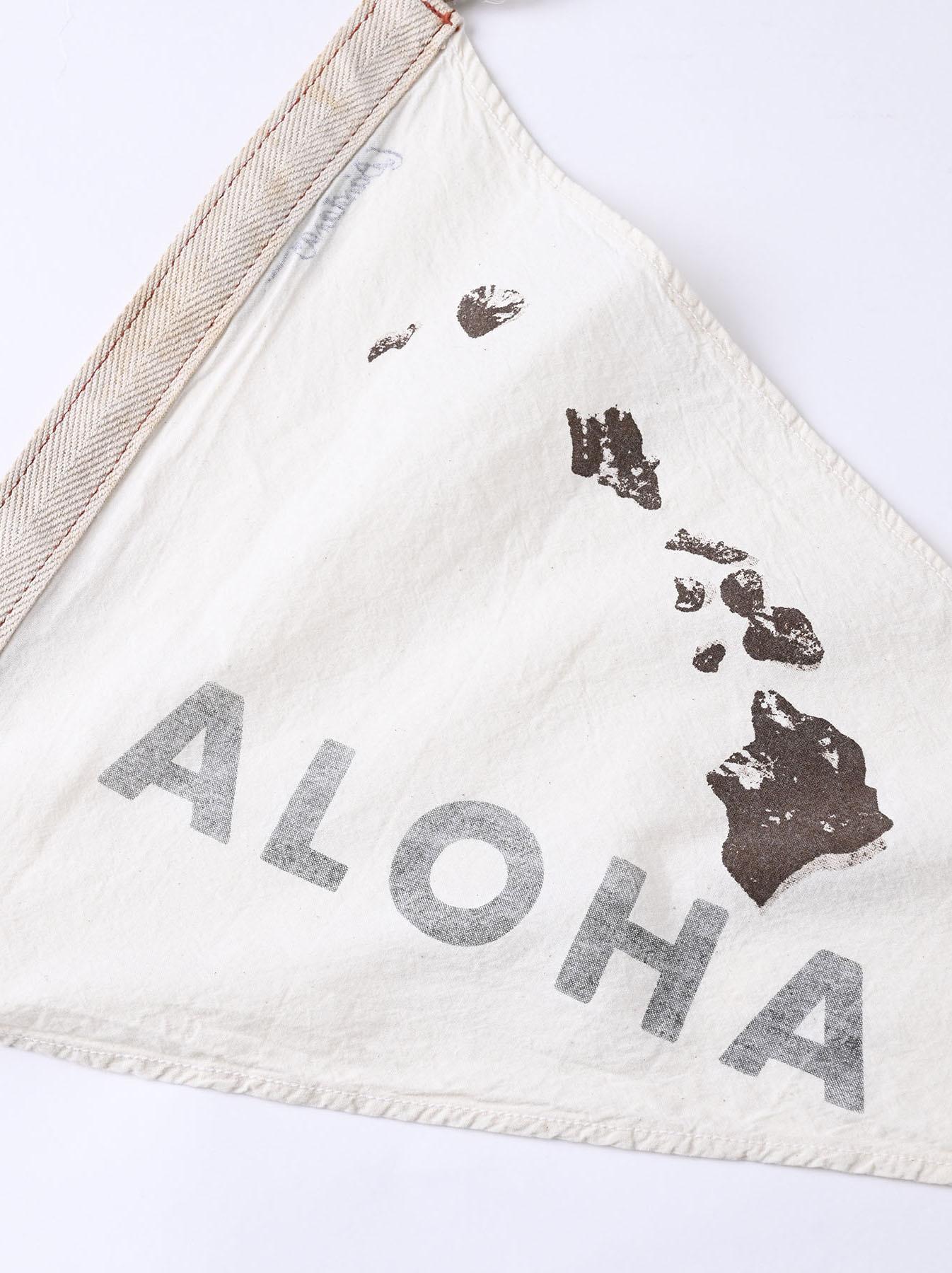 Aloha Pennant (0621)-2