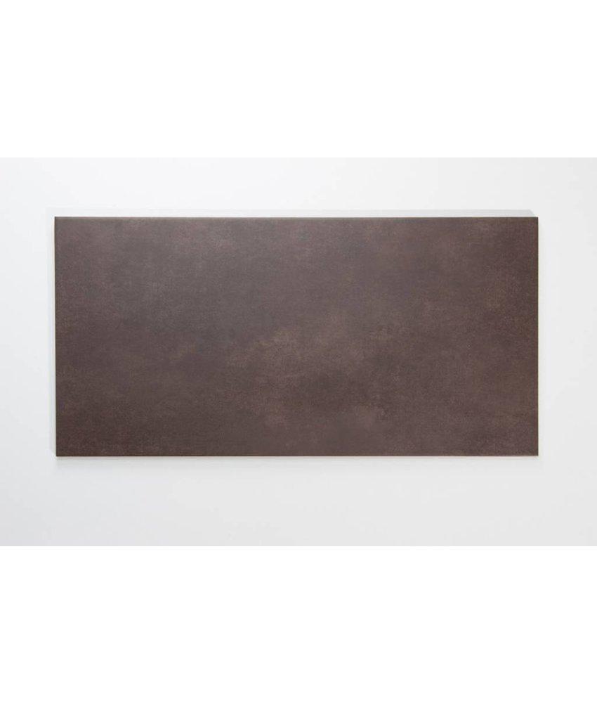 Feinsteinzeug glasiert nicht rektifiziert - PRAG mocca - 30x60 cm