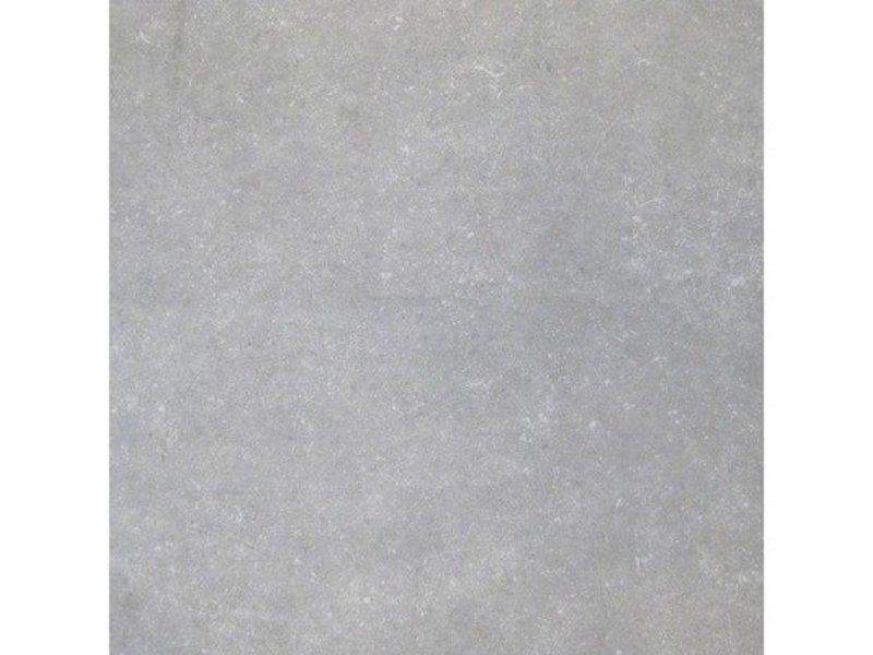 Bodenfliese Bluestone Grau Feinsteinzeug glasiert glänzend ...