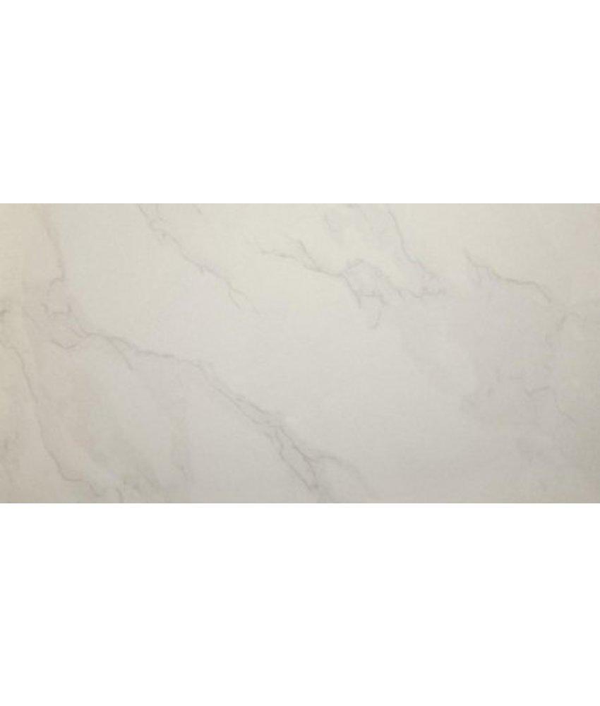 Bodenfliese Carrara Feinsteinzeug poliert - 30 cm x 60 cm x 1 cm