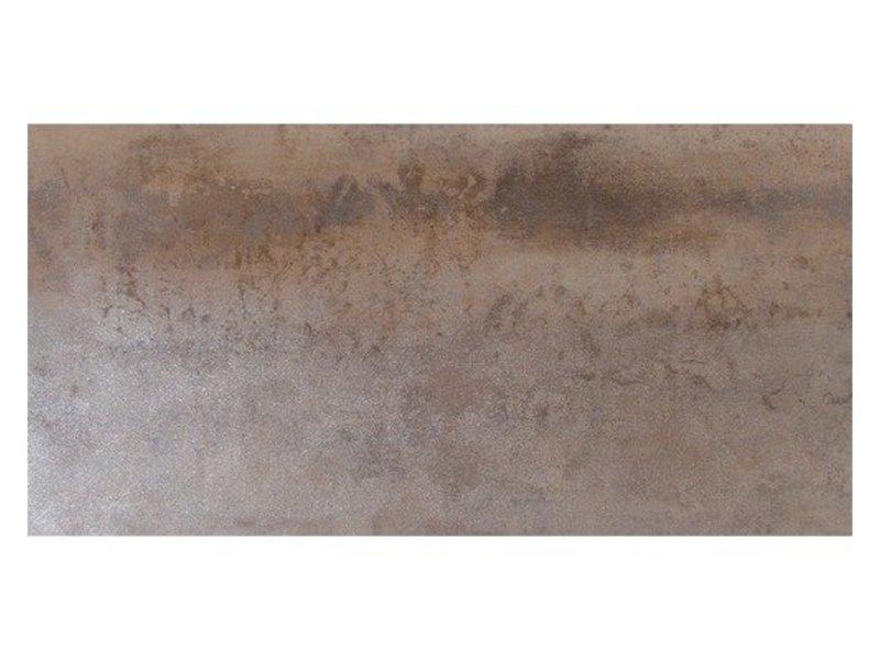 Bodenfliese Industry Barcelona Feinsteinzeug glänzend - 30 cm x 60 cm x 1 cm