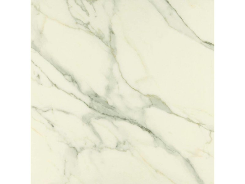 Bodenfliese Premium Marble Calacatta - 60 cm x 60 cm x 0,9 cm