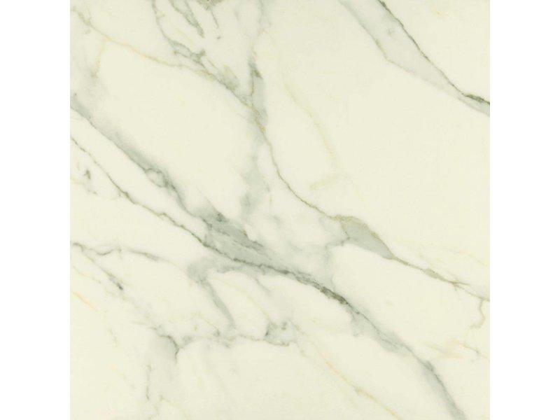 Bodenfliese Premium Marble Calacatta Poliert - 58 cm x 58 cm x 1 cm