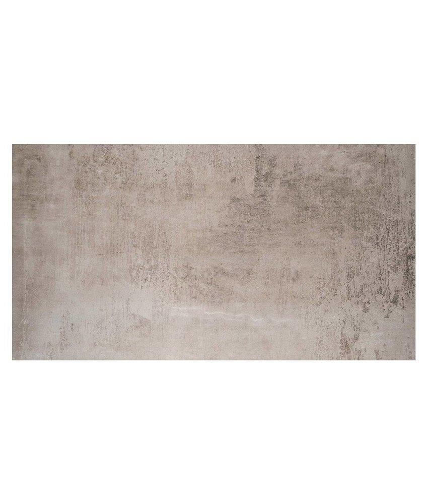 Bodenfliese Beca Grau Feinsteinzeug poliert - 60 cm x 120 cm x 1 cm