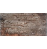 Bodenfliese Ecno Cherry Feinsteinzeug glasiert poliert - 16 cm x 65 cm x 0,9 cm