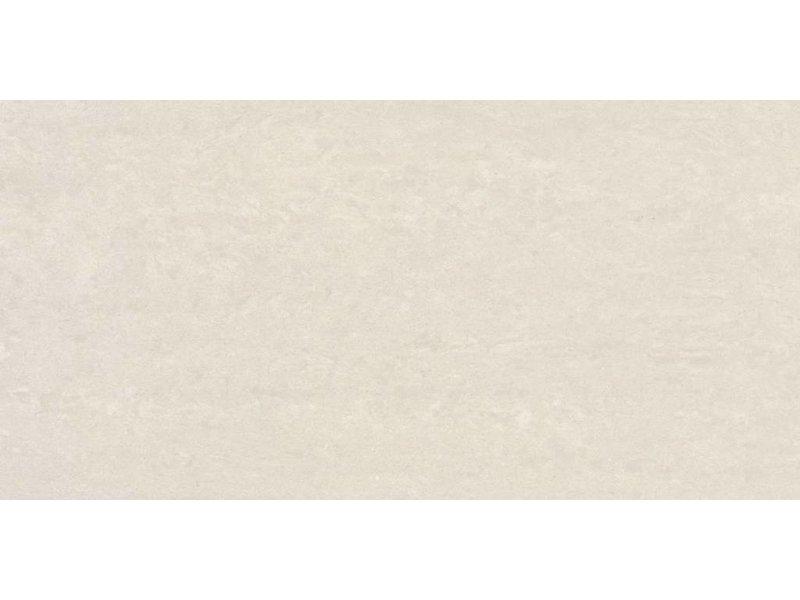 RAK Ceramics Feinsteinzeugfliese Gems cold light grey polished - 30x60 cm